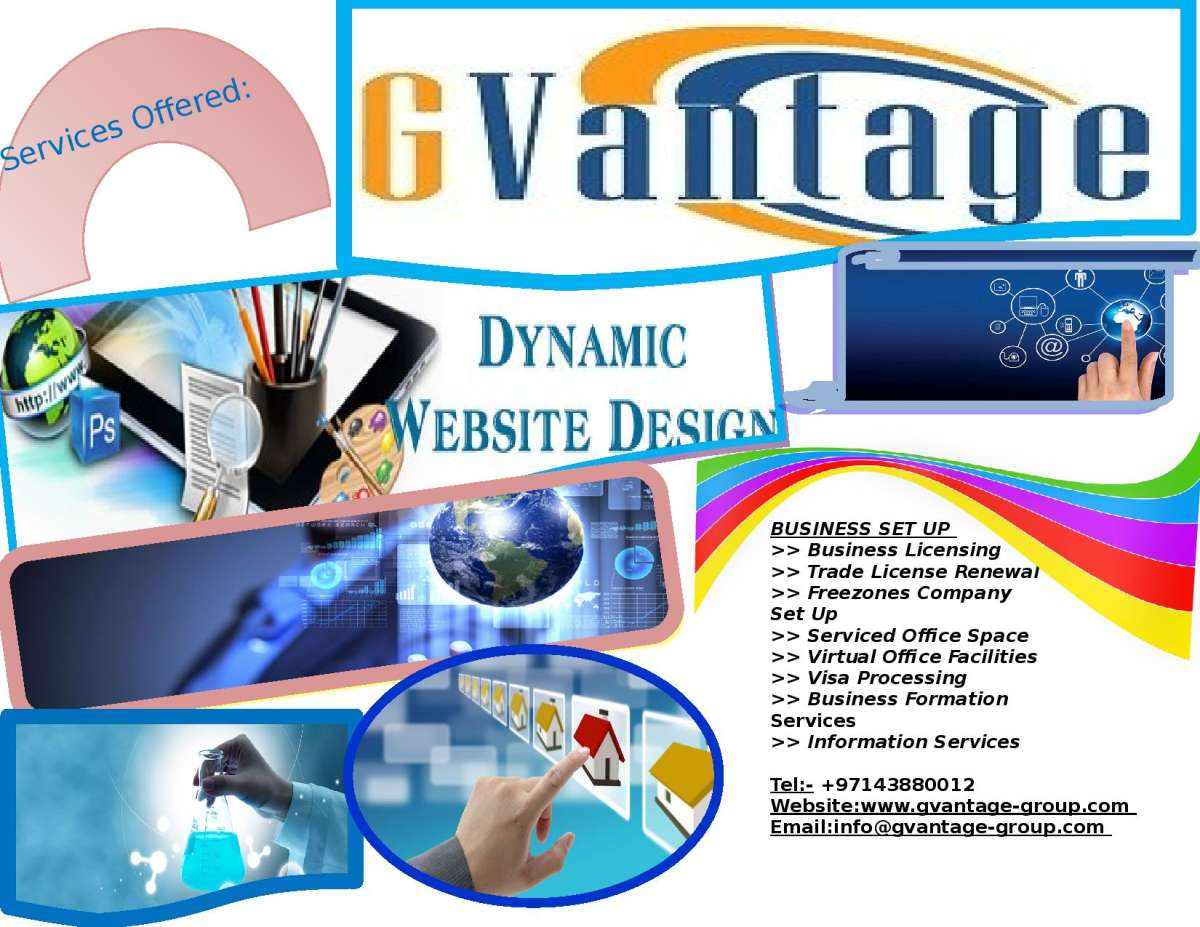 Software Development Networking Website Development