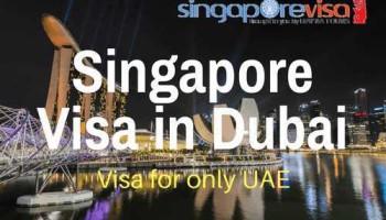 Singapore Visa.png