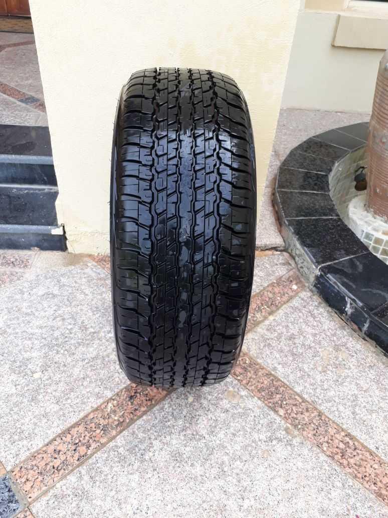 tire 2.jpg