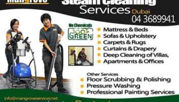 Mattress, Carpet, Sofa, Curtain Steam Cleaning AD00.jpg