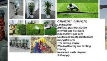 Office+indoor+plants+O553862762+Business-Industry-3857182_b_b6b79e1861d2b4ded178bc5fc3a47b0e.jpg
