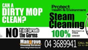 stem cleaning0.jpg