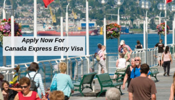 For FB AD - Apply Now For Canada Express Entry Visa -  Nexus Migration.jpg