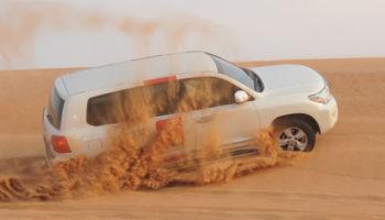 Morning Desert Safari.jpg