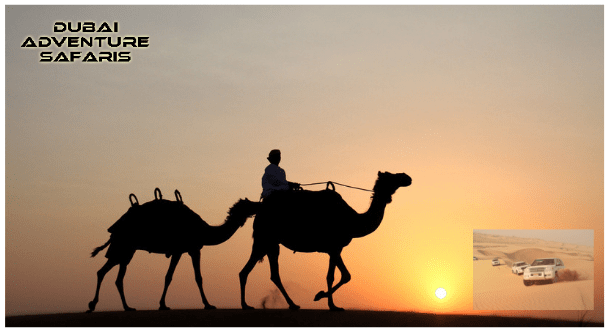 Desert-Safari-Dubai.jpg-min.png