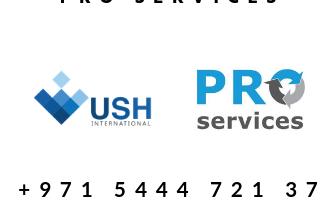 Copy of VAT Filing Service.png