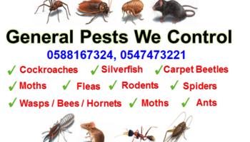 General-Pest-We-Control-20.png