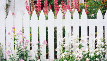 Picket Wooden Fence Dubai , Garden fence Abu Dhabi , Wooden fence Dubai , UAE (1).jpg