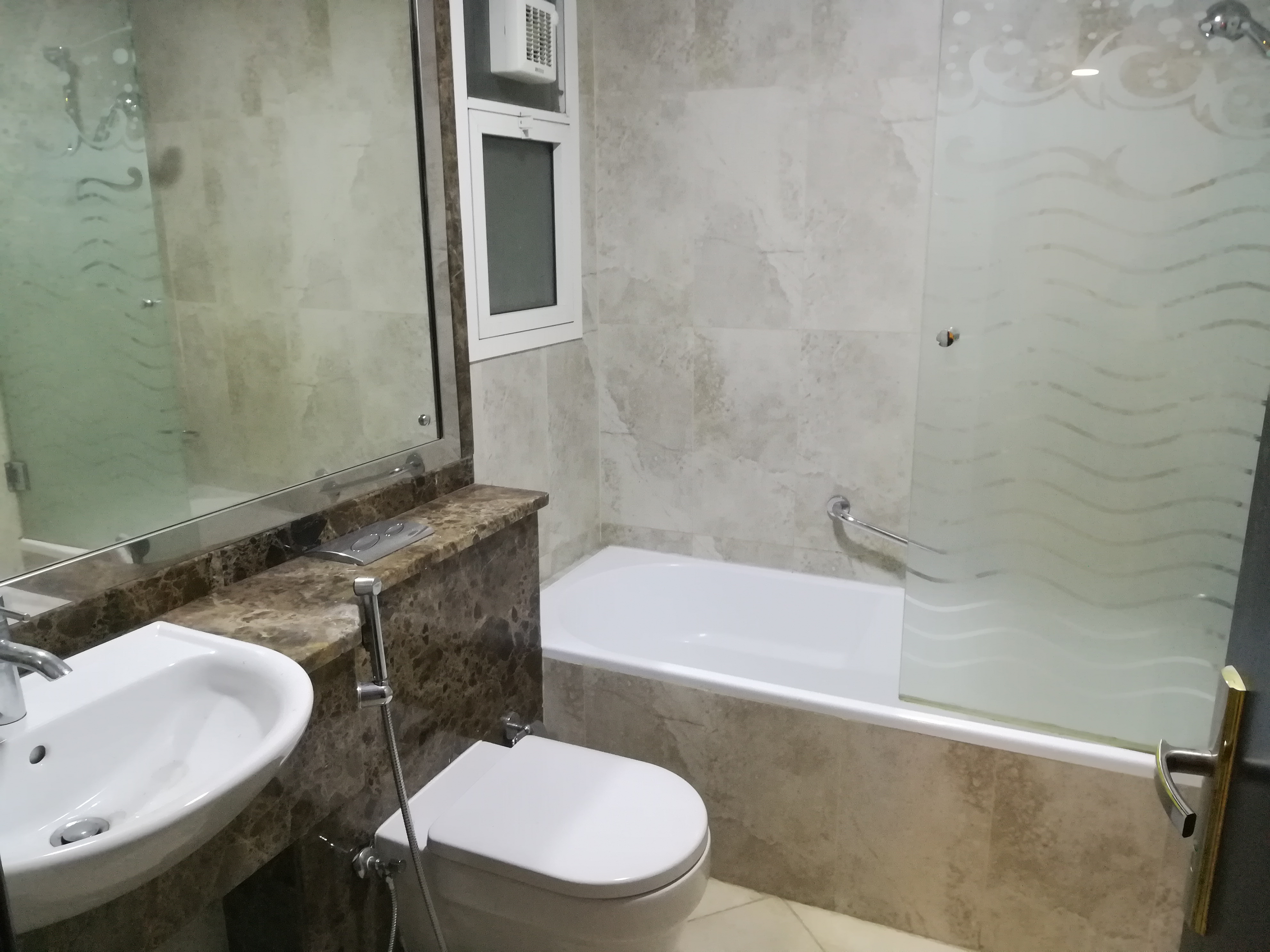 Elegant toilet (1).jpg