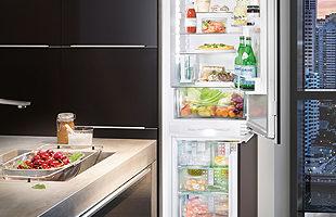 ART-Siemens- refrigerator appliences.jpg