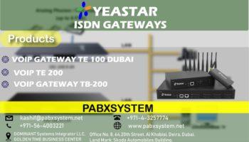Yeastar ISDN Gateways Dubai.jpeg