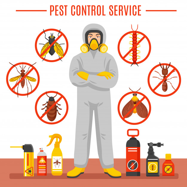 pest-control-service-illustration_1284-8981.jpg