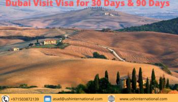 Dubai Visit Visa.png