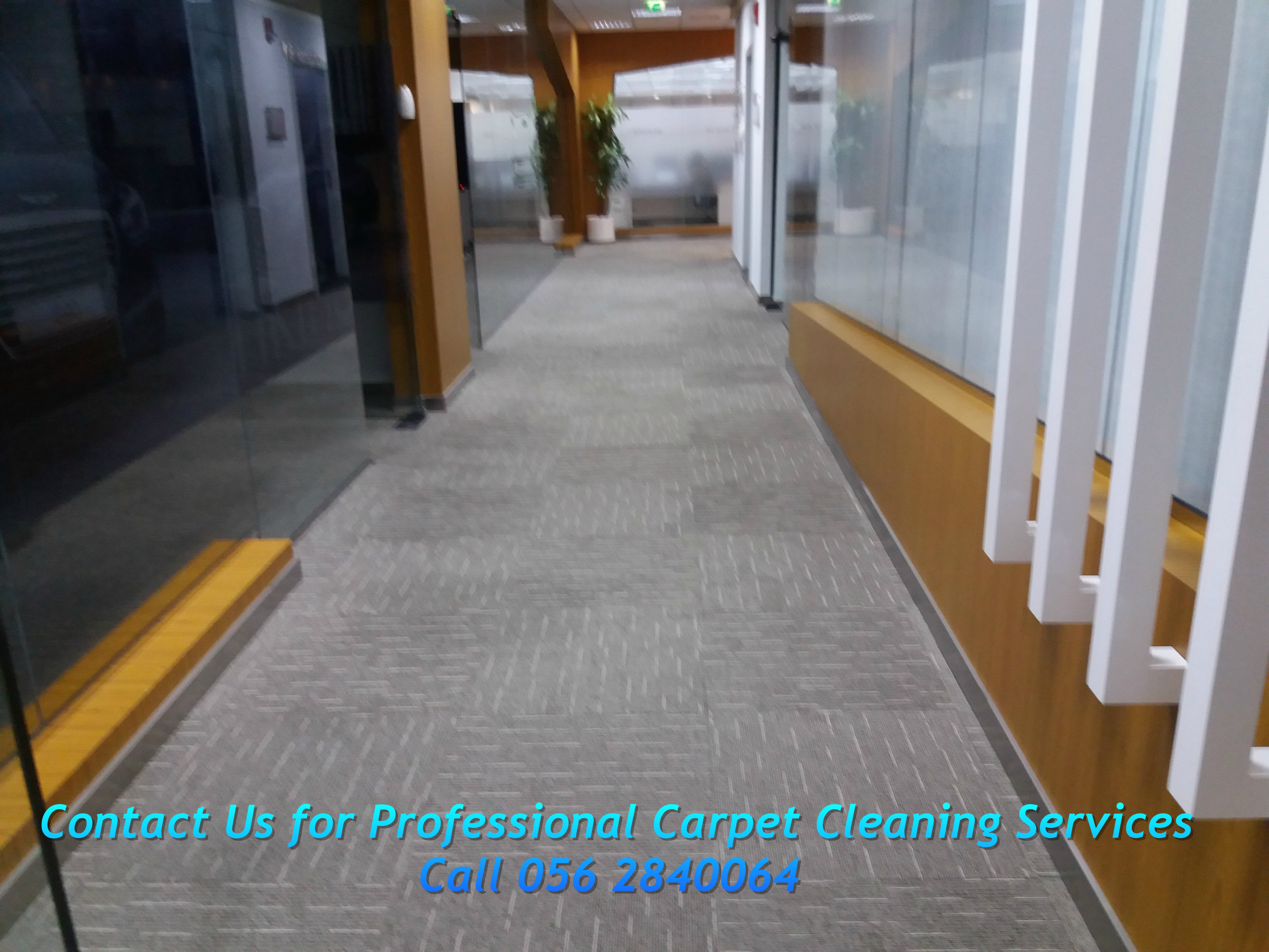 Professional Carpet cleaning.jpg