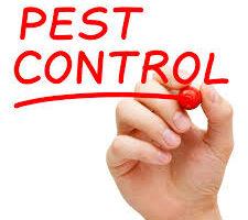 pest control 4.jpg