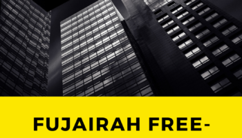 Fujairah free-zone business license.png