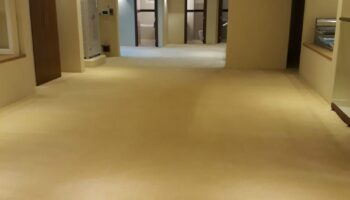 Office carpet Cleaning.jpg
