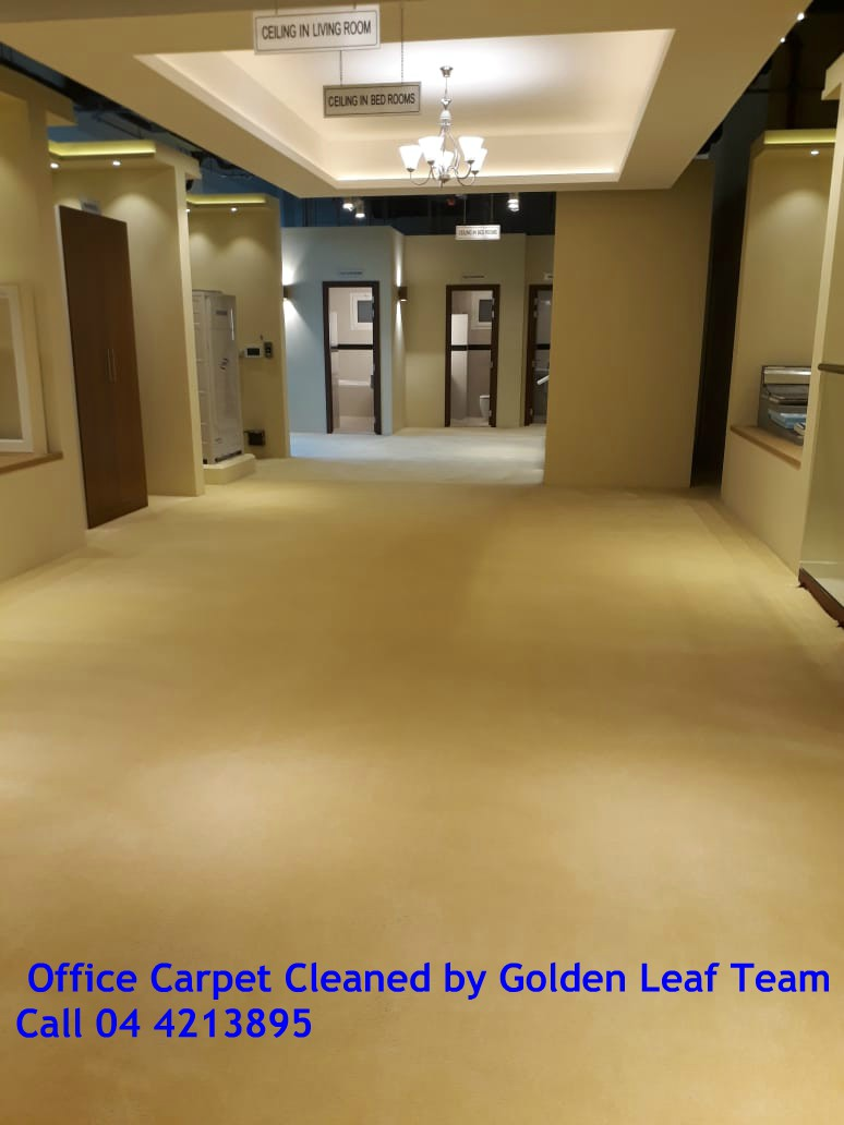 Office carpet Cleaning.jpg