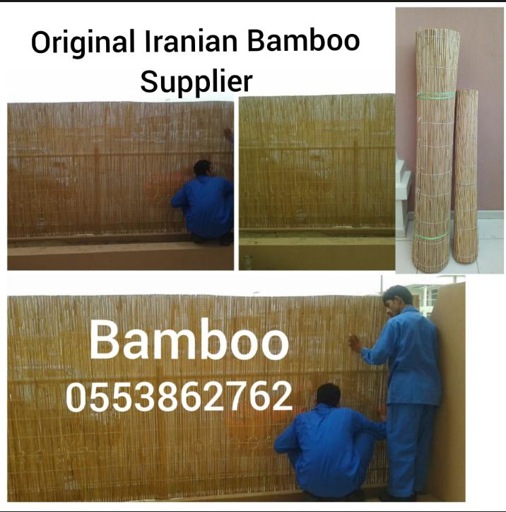 Bamboo design.png