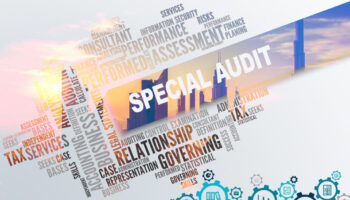 purpose of a special audit.jpg