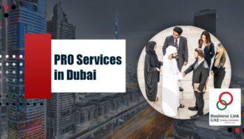 PRO-Services-in-Dubai.jpg
