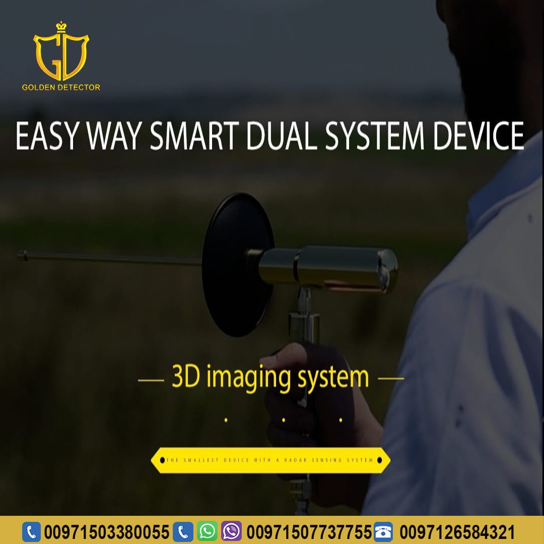 Easy Way Smart Dual System gold and metal detector device 2020.jpg