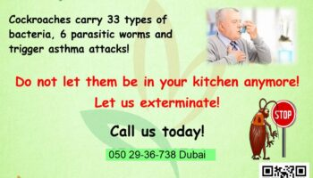 Cockroaches-Gel-Treatments-Dubai.jpg