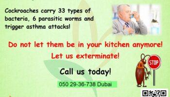 Cockroaches-Gel-Treatments-Dubai.jpg