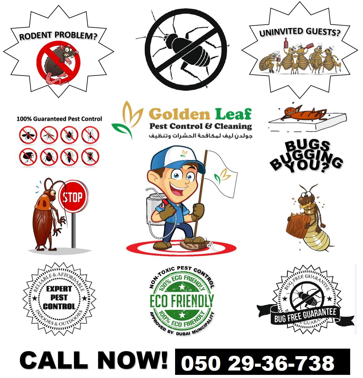 Dubai-Pest Control-Services.png