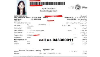 uae visit visa.png